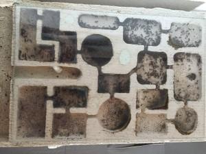 Photo 5 : Nid en béton cellulaire abritant la colonie de Formica fusca - Photo B. GILLES