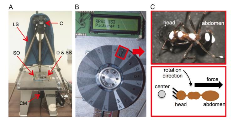 Illustration 1 : A) centrifugeuse (C : caméra