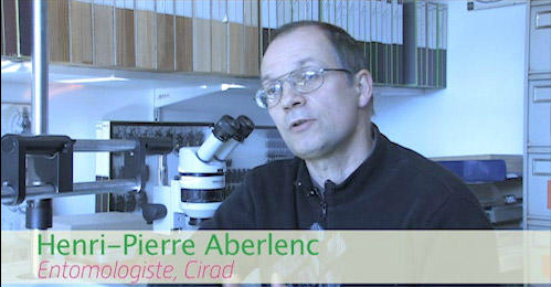 Henri-Pierre ABERLENC (Source : CIRAD)