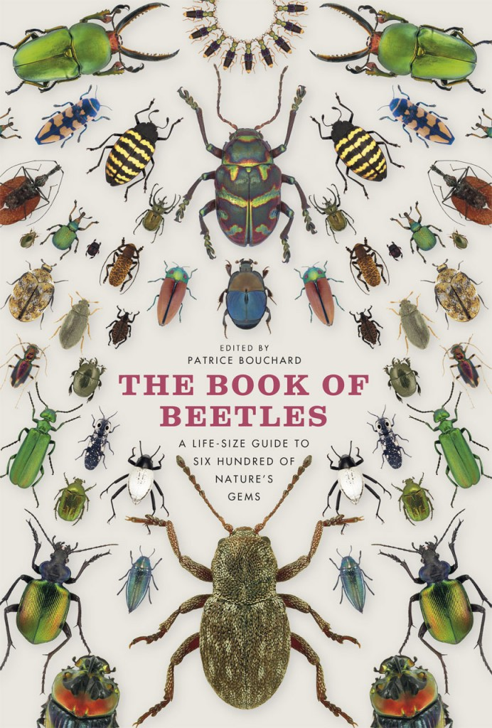 Book of beetle