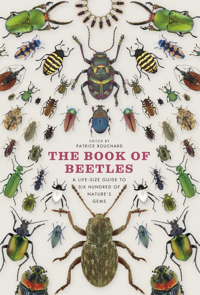 Book of beetle