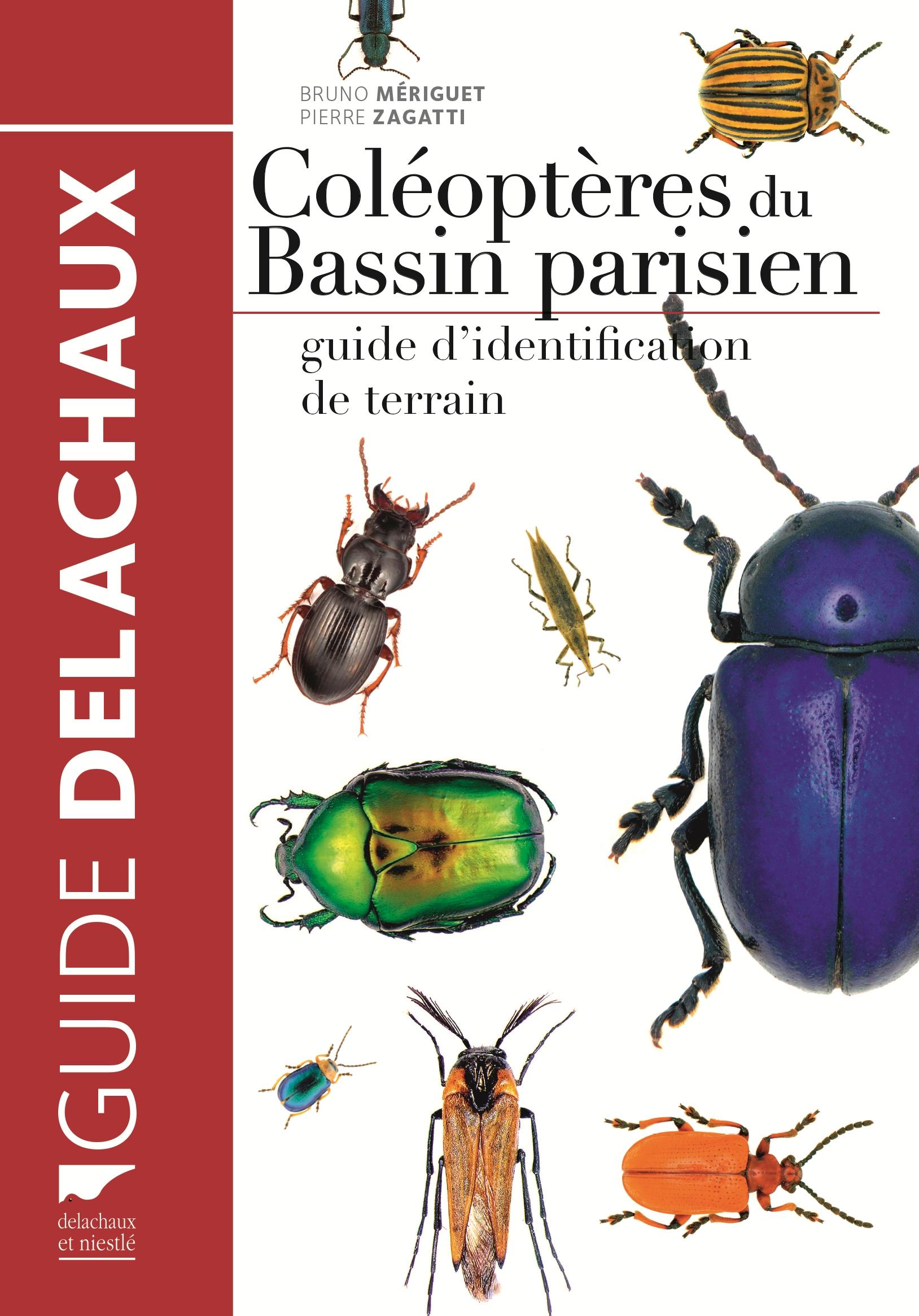 Couverture de l'ouvrage : Coléoptères du Bassin parisien (Source : B. Meriguet & P. Zagatti, Delachaux&Niestlé-2016)