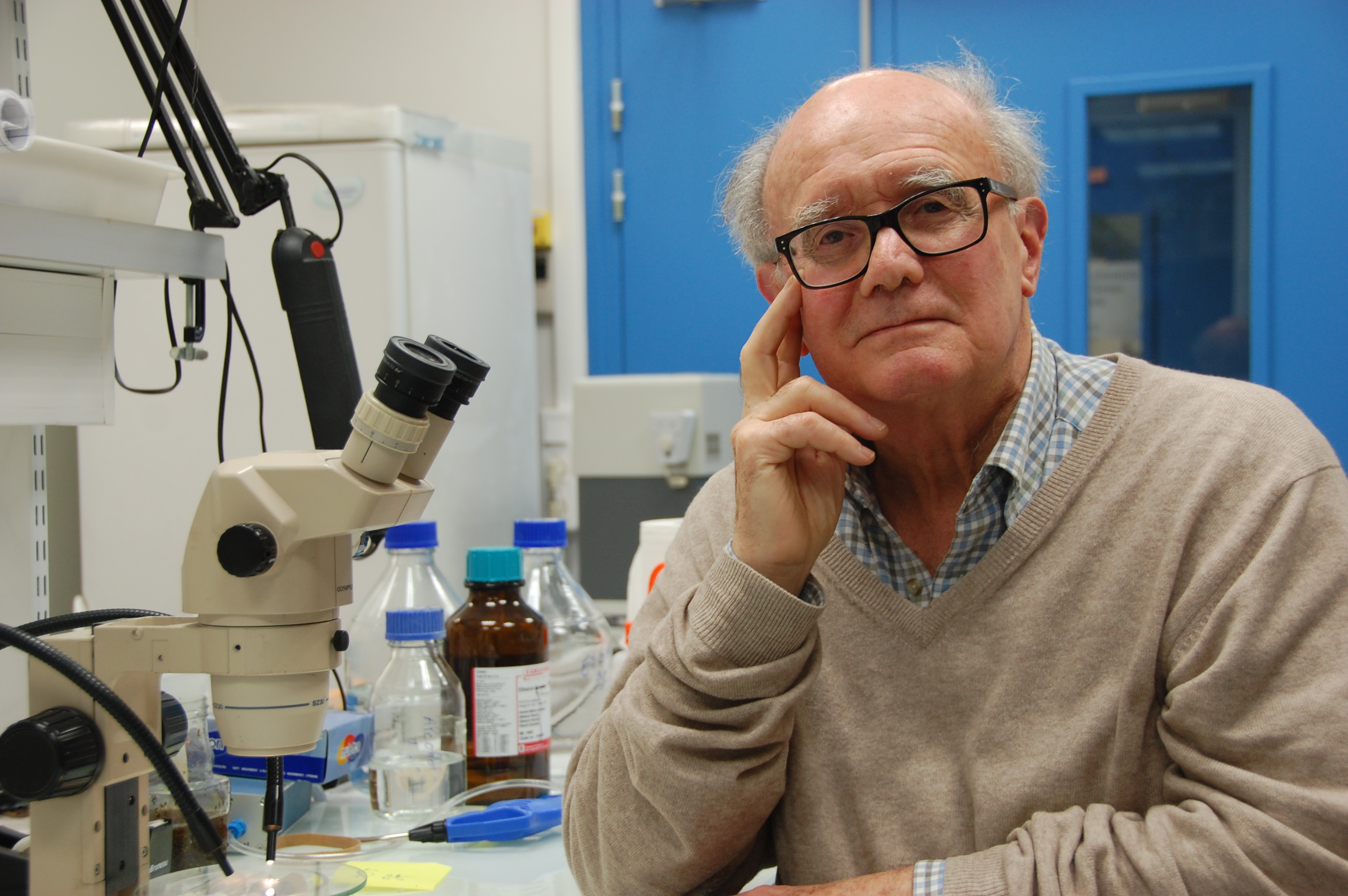 Yves Carton - Director of Research emeritus at CNRS (Source: Y. Carton)