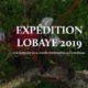 Mission Lobaye – à la recherche de Papilio antimachus en Centrafrique