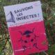 Sauvons les insectes – François Lasserre (2020)