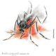 Les insecticides botaniques : des produits naturels contre les moustiques Aedes aegypti en Guyane ?