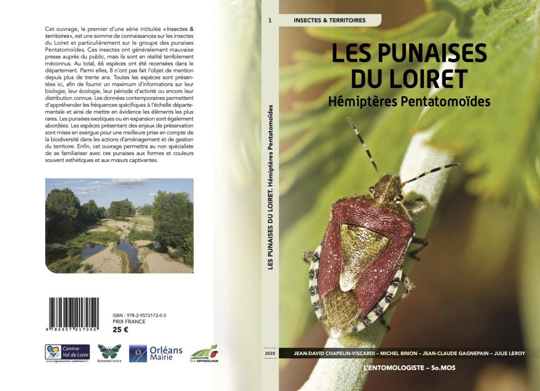 Les Punaises du Loiret – Hémiptères Pentatomoïdes
