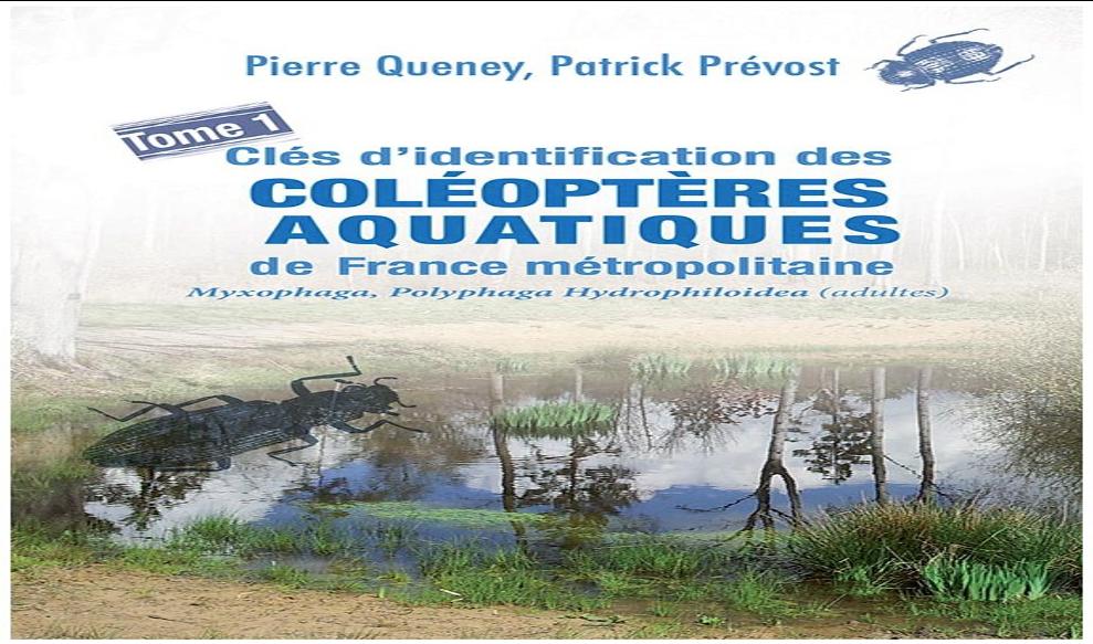 Pierre QUENEY publie «Clés d'identification des Coléoptères aquatiques de France métropolitaine»