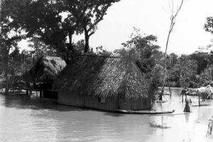 Zone d'inondation dans la plaine amazonienne (Bolivie)
