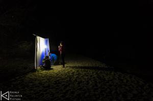 Collecte d'insectes de nuit au plège lumineux