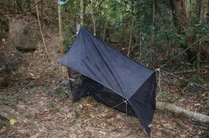 Piège Malaise - Forêt préservée