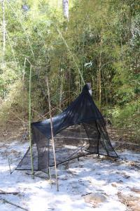 Installation piège Malaise - rive végétalisée